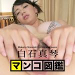 【無修正】マンコ図鑑 白石真琴