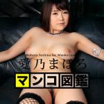 【無修正】マンコ図鑑 愛乃まほろ