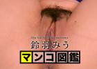 【人気AV無修正】マンコ図鑑 鈴羽みう 鈴羽みう